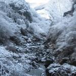 天然水が創られる風景