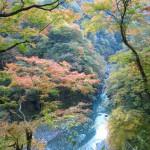 おいしい水 が創られる風景