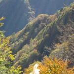 天然水が創られる山々の紅葉