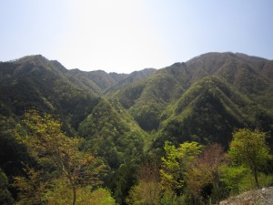 天然水が創られる山々 初夏
